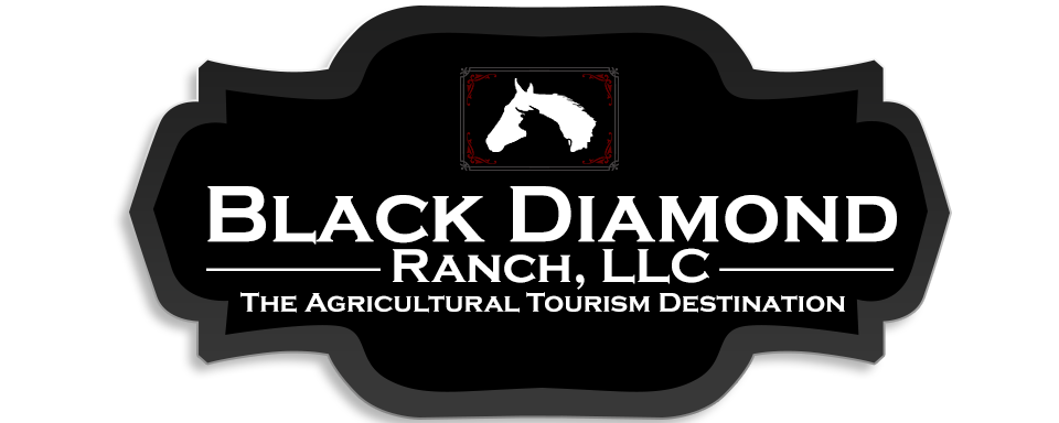 Black Diamond Ranch, Logo